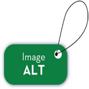 تگ Alt تصاویر یا متن جایگزین تصویر