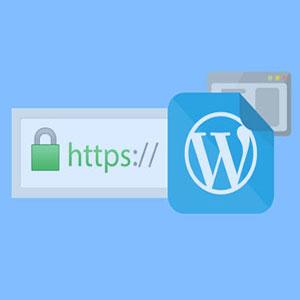 نصب گواهی SSL در وردپرس
