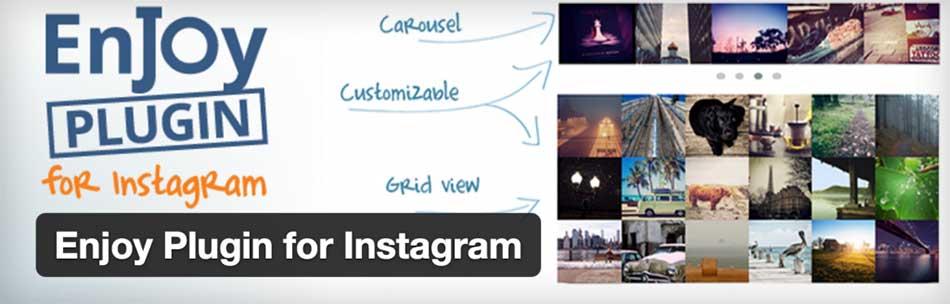 پلاگین Enjoy Instagram