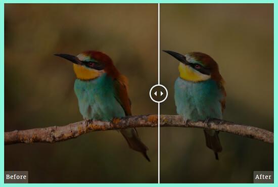نمایش تصویر قبل و بعد در وردپرس