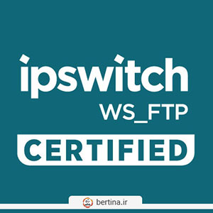 WS FTP Professional