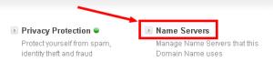 name server riseler